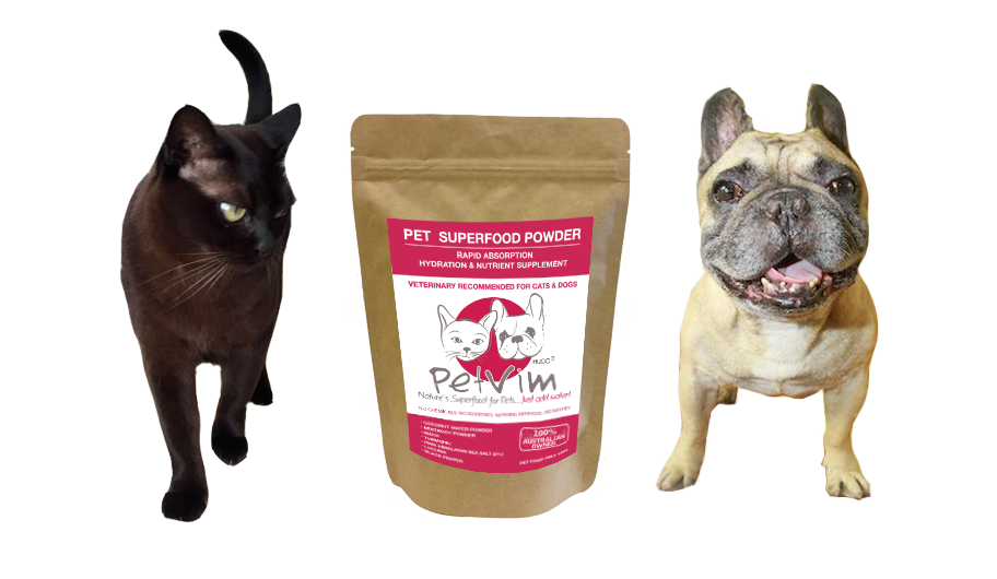 natural supplements for cats and dogs